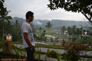 Vistas de la habitación en Ijen Resort & Villas