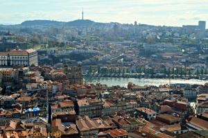 Views from Torre dos Clérigos