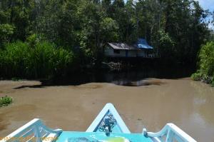 Cambio de agua en el río Sekonyer
