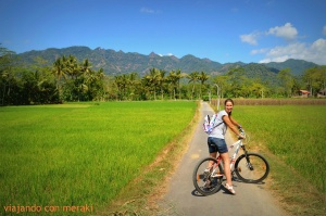 Alrededores del hotel Plataran Borobudur