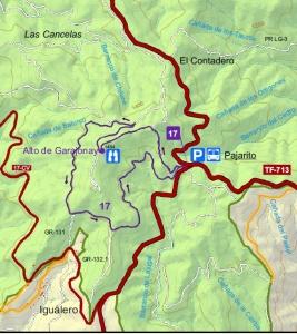 Ruta pajarito-Alto Garajonay- Pajarito