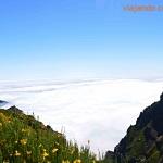Qué hacer y visitar en Madeira